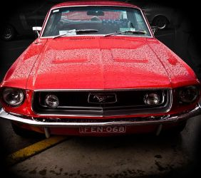 Red Mustang 2. by onyxcomix