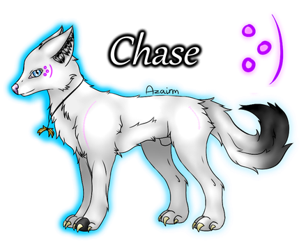 Chase by TheChelsea159