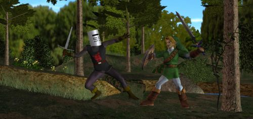 Link vs. the Black Knight by TheBlackNova