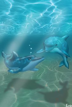 dolphin love by Ericorion