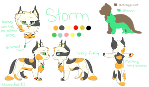 New Storm Reference by stormfire87