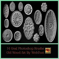 Old Wood Art Oval PS Brushs by WebFoot