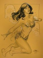 Wonder Woman New York 2010 by TerryDodson