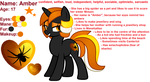 [MLP] Amber (old reference sheet) by AmberPone