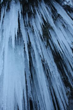 icicles by owlbird