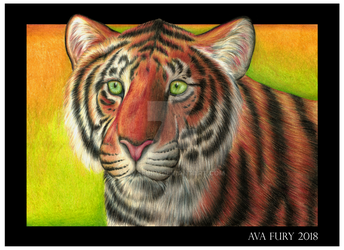 Tiger portrait by avafury
