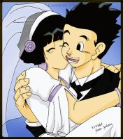 Gohan and Videl by camlost
