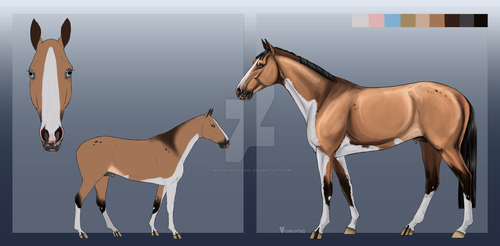 Horse Adopt 1(SOLD) by whitecrow-soul