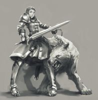 Female knight by MartinCi