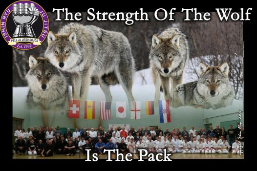 The Strength of The Wolf is The Pack by kevinpell