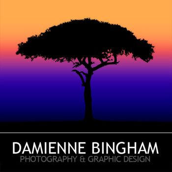 Damienne Bingham Photography and Design by GreenEyedHarpy