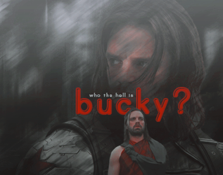 who the hell is bucky? by steve--rogers