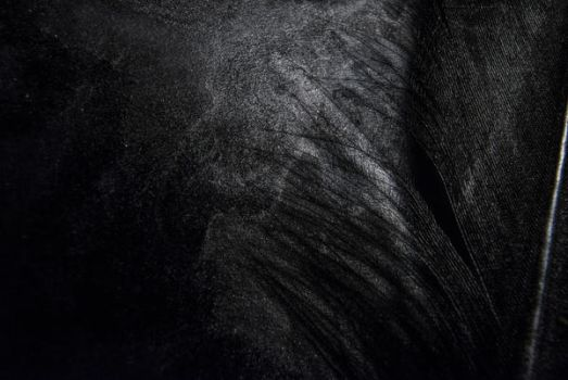 Abstract 2 by Lumina-Obscura