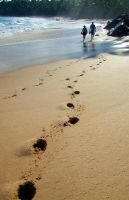 Footprints on the Beach by lemonfox2002