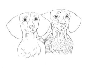 Dachshunds by ShenaniBOOM