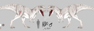 Aldo - Reference sheet + description by EvilSonikku