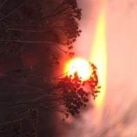Burn by temporariness