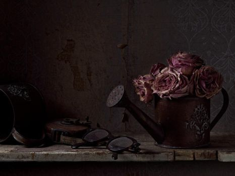 Still-life with watering can by MarkScheider