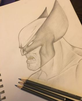 Logan Wolverine sketch by Blindfaith-boo
