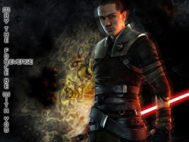 Star Wars:The Force Unleashed by V3oDoR