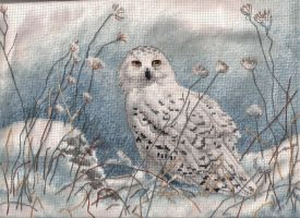 snowy owl by the-stitcher