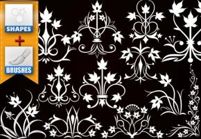 flowers decorating brushes and shapes by roula33
