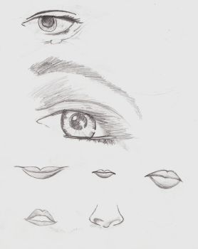 Practice on Eyes and Noses by YecatsCullenLOTR