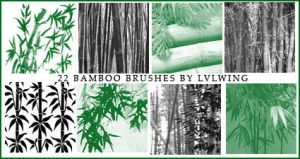 Bamboo brushes by lvlwing