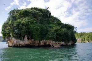 Los Haitises  National Park Dominican Republic 21 by FairieGoodMother