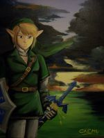Another Portrait of Link by DNLINK