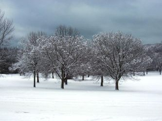 Winter Wonderland -- Landscape by rpg-chick