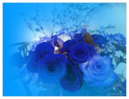 Blue roses..... by gintautegitte69
