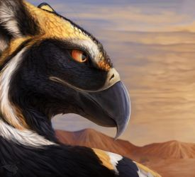 [ CLOSED ] Plains Gryphon Adopt (+ Extra Art!) by FellFallow
