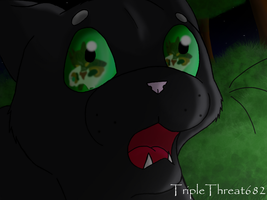 Ravenpaw's Witness by TripleThreat682