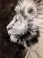Lion by YoungLadyArt