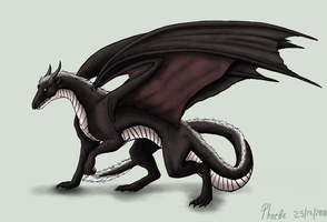 Black Bladewing dragon 2.0 by ElvenAngel