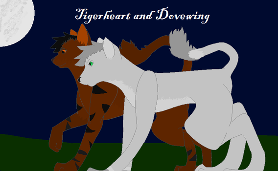 NoxidamXV Contest Entry: Tigerheart and Dovewing by MintHeartBreak
