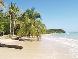 Beach Costa rica by videlph