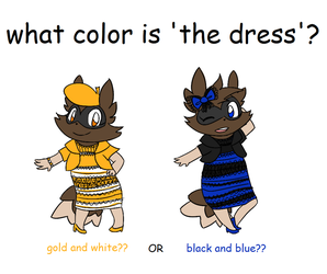 what color is the dress??? by Giniqua