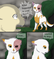 Daisy and Brightheart: Scars by MiaMaha