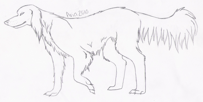 English Setter Sketch by KaiStray