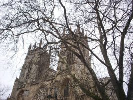 York cathedral by Holsmetree