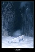Frost by lostgirl