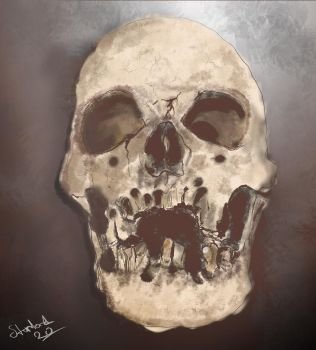 Skull Draw by starlord20