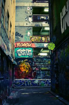 Lion street. by synthetic-order