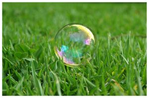 Bubble grass by zentenophotography