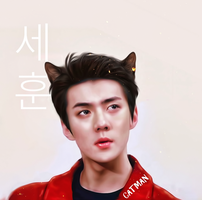 Sehun / CATMAN by bubble-min