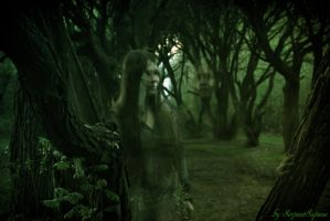 Ghost in the Forest by SerpentSapiens
