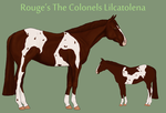 Rouge's The Colonels Lilcatolena by theRyanna