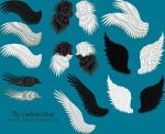 Pack 02 - 16 PNG Feathered Wings by Thy-Darkest-Hour